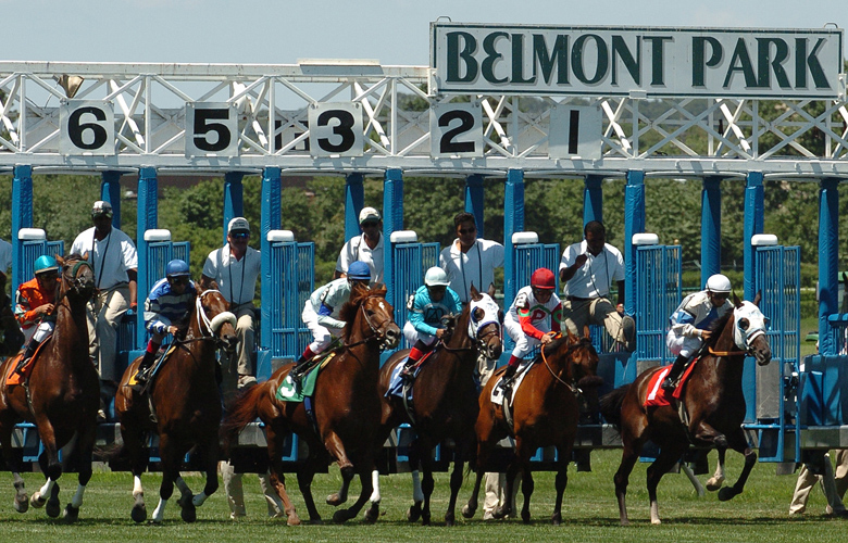 Top 10 Largest Horse Racing Venues by Capacity