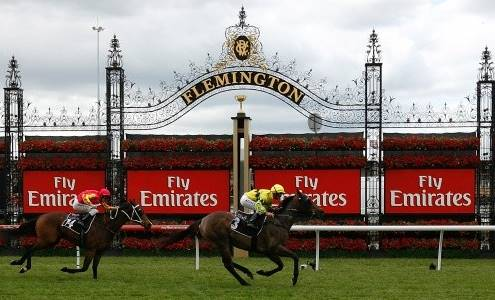 SD-FlemingtonRacecourse-1